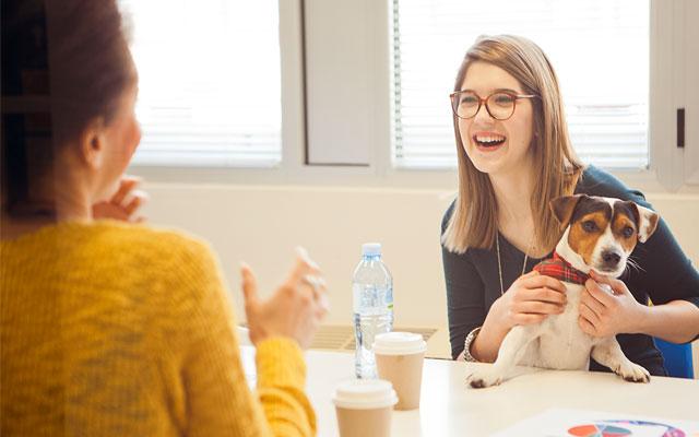mejor comunicación en el trabajo